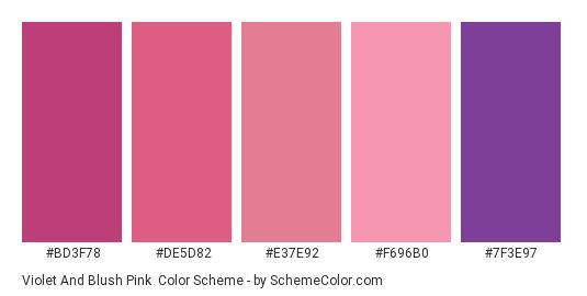 Violet and Blush Pink - Color scheme palette thumbnail - #BD3F78 #DE5D82 #E37E92 #F696B0 #7F3E97