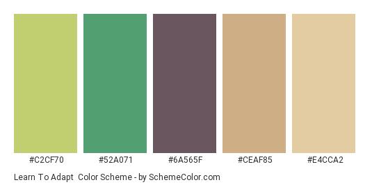 Learn to Adapt - Color scheme palette thumbnail - #C2CF70 #52A071 #6A565F #CEAF85 #E4CCA2
