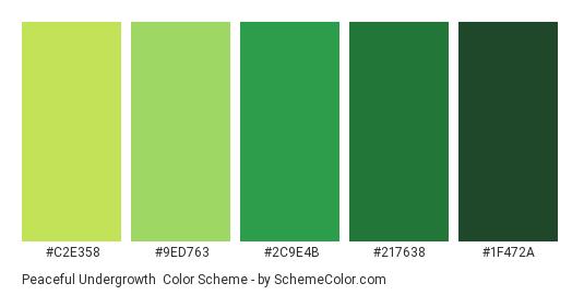 Peaceful Undergrowth - Color scheme palette thumbnail - #C2E358 #9ED763 #2C9E4B #217638 #1F472A