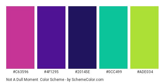 Not a Dull Moment - Color scheme palette thumbnail - #C63596 #4F1295 #20145e #0CC499 #ADE034