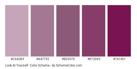 Look at Yourself - Color scheme palette thumbnail - #C6A5B9 #A47792 #8d5978 #873d69 #7a1451