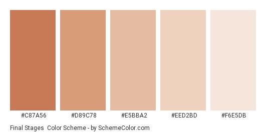 Final Stages - Color scheme palette thumbnail - #C87A56 #D89C78 #E5BBA2 #EED2BD #F6E5DB