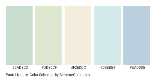 Pastel Nature - Color scheme palette thumbnail - #CADECD #DDE6CF #F2EDDC #D3EBE9 #BAD0DE