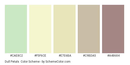 Dull Petals - Color scheme palette thumbnail - #CAE8C2 #F5F6CE #E7E6BA #C9BDA5 #A48684