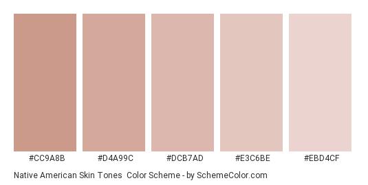 Native American Skin Tones - Color scheme palette thumbnail - #CC9A8B #D4A99C #DCB7AD #E3C6BE #EBD4CF