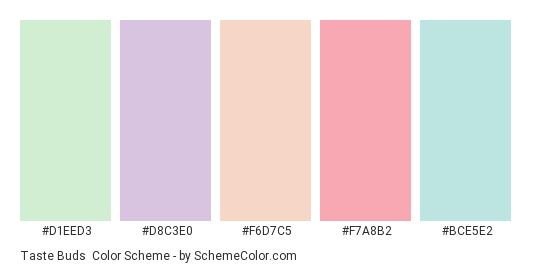 Taste Buds - Color scheme palette thumbnail - #D1EED3 #D8C3E0 #F6D7C5 #F7A8B2 #BCE5E2