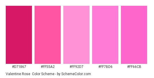 Valentine Rose - Color scheme palette thumbnail - #D71867 #FF55A2 #FF92D7 #FF7BD6 #FF66CB