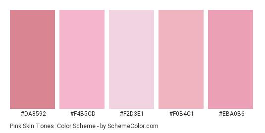 Pink Skin Tones - Color scheme palette thumbnail - #DA8592 #F4B5CD #F2D3E1 #F0B4C1 #EBA0B6