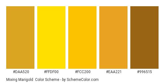 Mixing Marigold - Color scheme palette thumbnail - #DAA520 #FFDF00 #FCC200 #EAA221 #996515