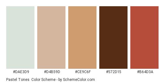 Pastel Tones - Color scheme palette thumbnail - #DAE3D9 #D4B59D #CE9C6F #572D15 #B64D3A