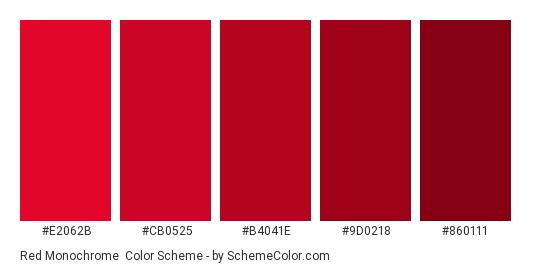 Red Monochrome - Color scheme palette thumbnail - #E2062B #CB0525 #B4041E #9D0218 #860111