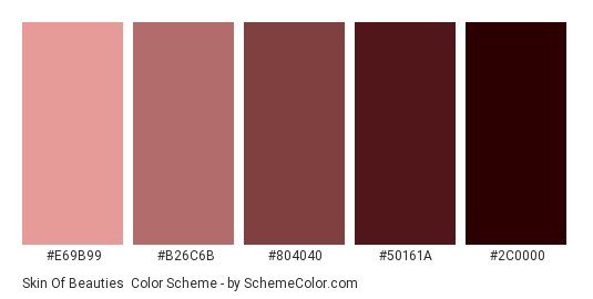 Skin of Beauties - Color scheme palette thumbnail - #E69B99 #B26C6B #804040 #50161A #2C0000