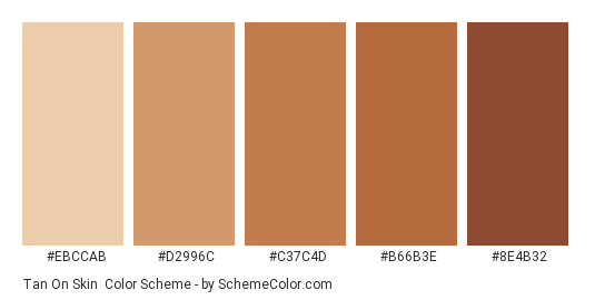 Tan On Skin - Color scheme palette thumbnail - #EBCCAB #D2996C #C37C4D #B66B3E #8E4B32