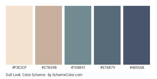 Dull Look - Color scheme palette thumbnail - #F3E2CF #C7B09B #708B91 #576B79 #48556B