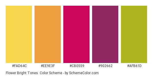 Flower Bright Tones - Color scheme palette thumbnail - #FAD64C #EE9E3F #CB0559 #902662 #AFB61D
