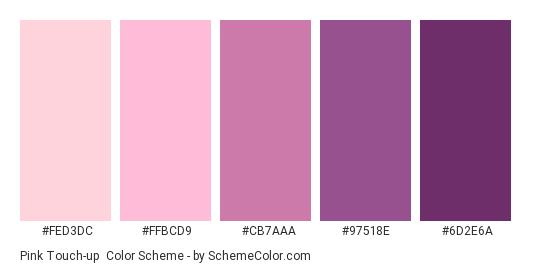 Pink Touch-up - Color scheme palette thumbnail - #FED3DC #FFBCD9 #CB7AAA #97518E #6D2E6A