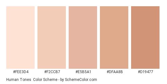 Human Tones - Color scheme palette thumbnail - #FEE3D4 #F2CCB7 #E5B5A1 #DFAA8B #D19477