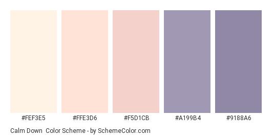 Calm Down - Color scheme palette thumbnail - #FEF3E5 #FFE3D6 #F5D1CB #A199B4 #9188A6