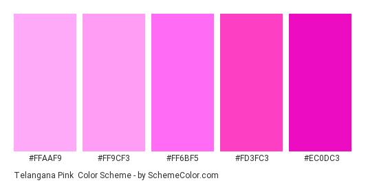 Telangana Pink - Color scheme palette thumbnail - #FFAAF9 #FF9CF3 #FF6BF5 #FD3FC3 #EC0DC3