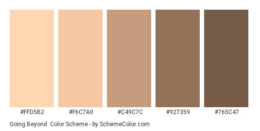 Going Beyond - Color scheme palette thumbnail - #FFD5B2 #F6C7A0 #C49C7C #927359 #765C47