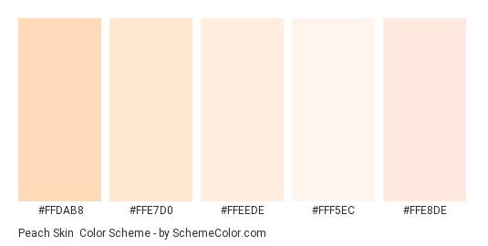 Peach Skin - Color scheme palette thumbnail - #FFDAB8 #FFE7D0 #FFEEDE #FFF5EC #FFE8DE