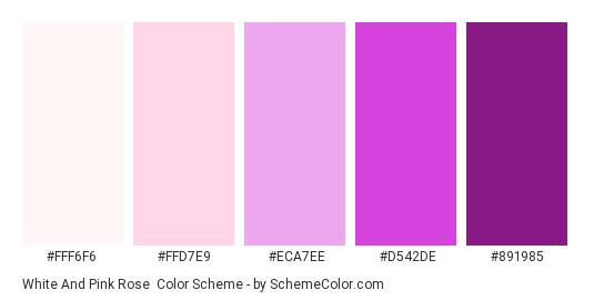 White and Pink Rose - Color scheme palette thumbnail - #FFF6F6 #FFD7E9 #ECA7EE #D542DE #891985