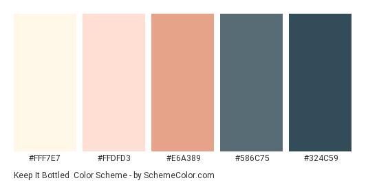 Keep it Bottled - Color scheme palette thumbnail - #FFF7E7 #FFDFD3 #E6A389 #586C75 #324C59