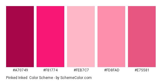 Pinked Inked - Color scheme palette thumbnail - #a70749 #f81774 #feb7c7 #fd8fad #e75581