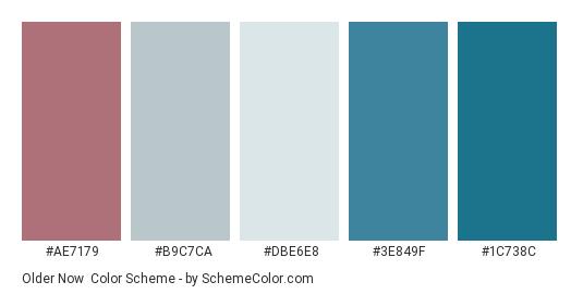 Older Now - Color scheme palette thumbnail - #ae7179 #b9c7ca #dbe6e8 #3e849f #1c738c