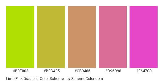Lime-Pink Gradient - Color scheme palette thumbnail - #b0e003 #beba35 #cb9466 #d96d98 #e647c9