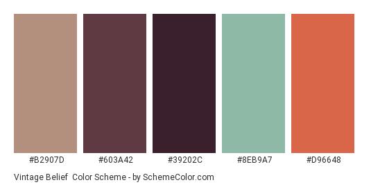 Vintage Belief - Color scheme palette thumbnail - #b2907d #603a42 #39202c #8eb9a7 #d96648