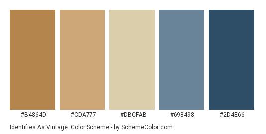 Identifies as Vintage - Color scheme palette thumbnail - #b4864d #cda777 #dbcfab #698498 #2d4e66