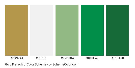 Gold Pistachio Color Scheme Palette Thumbnail B4974a F1f1f1 92b884 018e49