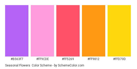 Seasonal Flowers - Color scheme palette thumbnail - #b563f7 #FF9CDE #FF5269 #FF9812 #FFD70D