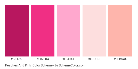 Peaches and Pink - Color scheme palette thumbnail - #b8175f #f02f84 #ffa8ce #fddede #feb5ac