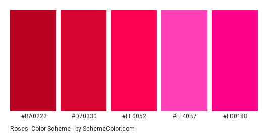 Roses - Color scheme palette thumbnail - #ba0222 #d70330 #fe0052 #ff40b7 #fd0188