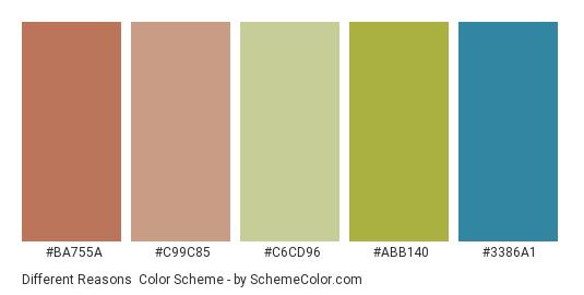 Different Reasons - Color scheme palette thumbnail - #ba755a #c99c85 #c6cd96 #abb140 #3386a1