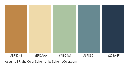 Assumed Right - Color scheme palette thumbnail - #bf8748 #efdaaa #abc4a1 #678991 #273A4F