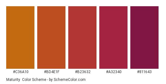Maturity - Color scheme palette thumbnail - #c36a10 #bd4e1f #b23632 #a32340 #811643
