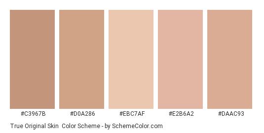 True Original Skin - Color scheme palette thumbnail - #c3967b #d0a286 #ebc7af #e2b6a2 #daac93