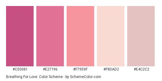 Breathing for Love - Color scheme palette thumbnail - #c55081 #e27196 #f7959f #f8dad2 #e4c2c2