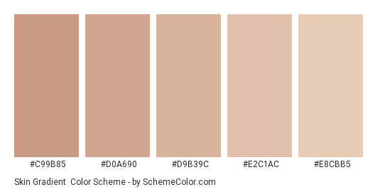 Skin Gradient - Color scheme palette thumbnail - #c99b85 #d0a690 #d9b39c #e2c1ac #e8cbb5