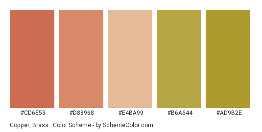 Copper, Brass & Gold - Color scheme palette thumbnail - #cd6e53 #d88968 #e4ba99 #b6a644 #ad9b2e