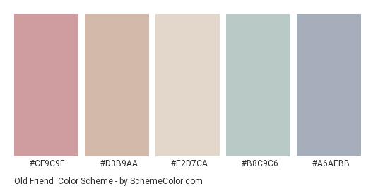 Old Friend - Color scheme palette thumbnail - #cf9c9f #d3b9aa #e2d7ca #b8c9c6 #a6aebb
