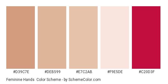 Feminine Hands - Color scheme palette thumbnail - #d39c7e #deb599 #e7c2ab #f9e5de #c20d3f