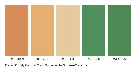 Potted Prickly Cactus - Color scheme palette thumbnail - #d58d59 #e3b06f #e6ca9d #51905d #4d8955