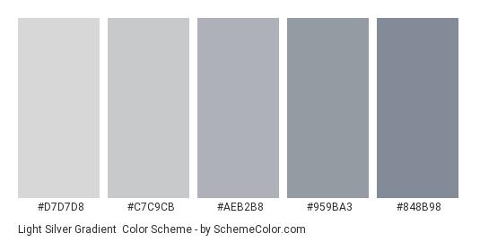 Light Silver Gradient - Color scheme palette thumbnail - #d7d7d8 #c7c9cb #aeb2b8 #959ba3 #848b98