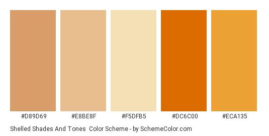 Shelled Shades and Tones - Color scheme palette thumbnail - #d89d69 #e8be8f #f5dfb5 #dc6c00 #eca135
