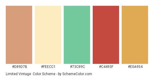 Limited Vintage - Color scheme palette thumbnail - #d89d7b #feecc1 #73c89c #c4493f #e0a954