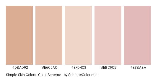 Simple Skin Colors - Color scheme palette thumbnail - #dbad92 #e6c0ac #efd4c8 #ebc9c5 #e3baba